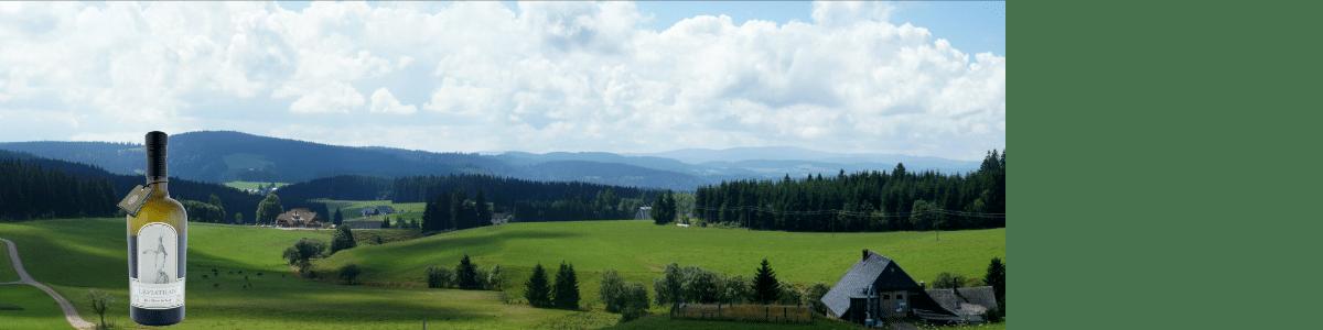 Schwarzwald Gin der Edelbrennerei Wurth