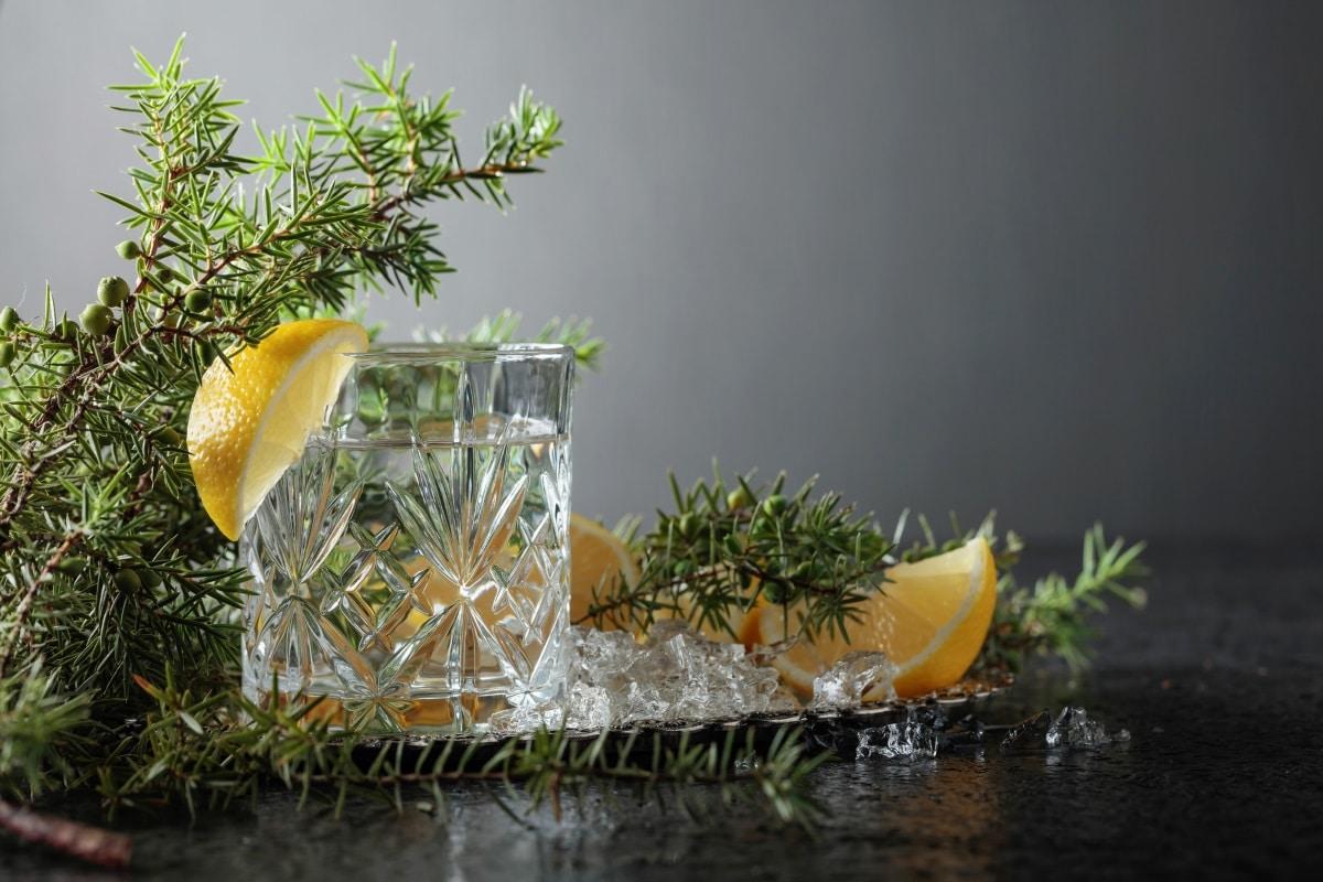 Gin Tonic Rezept und Gin Tonic Zubereitung
